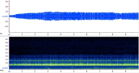 Sonogram of the Handsome trig (Phyllopalpus pulchellus); click here to listen to the recording.