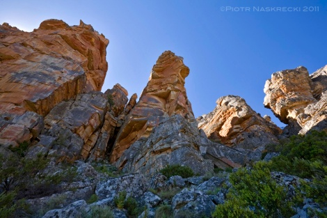 Sandstone spires above Wolfberg Cracks, one of the few caves where cave katydids can be found.